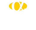 Alpha Consulting Logo
